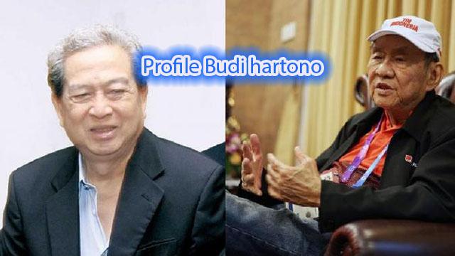 Profile Budi hartono